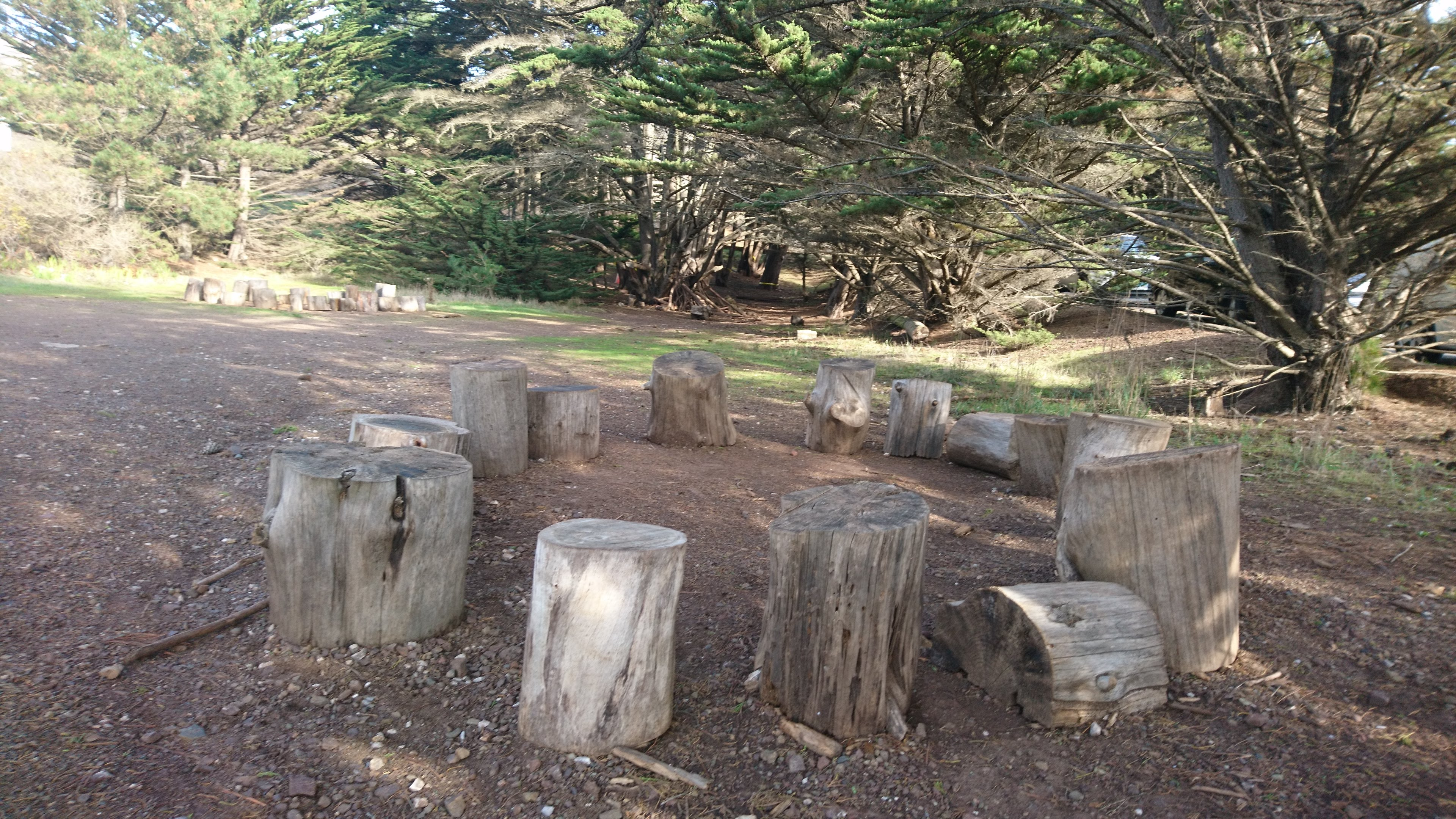 Photo of several seats made of stumps in a ring